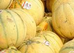 Marche-melons
